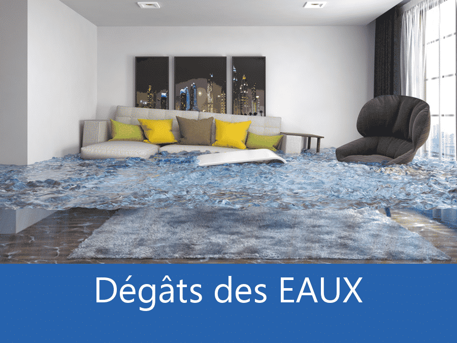 expertise humidité 76, expert humidité Rouen, cause moisissure Dieppe, solutions hulidité La Seine-Maritime,
